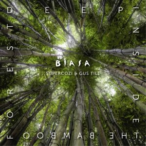 BIASA ~ Deep Inside The Bamboo Forest